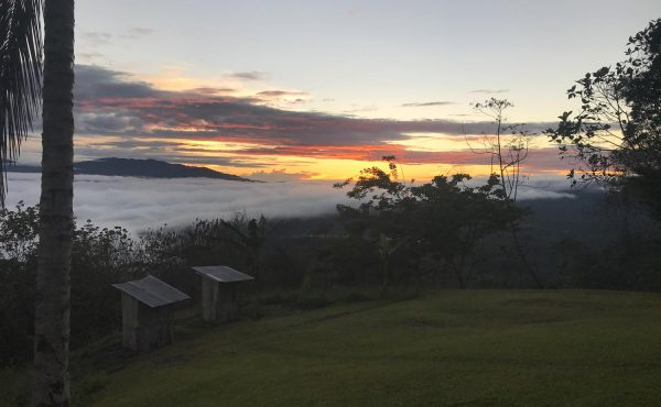 Kokoda Trip – April 2019