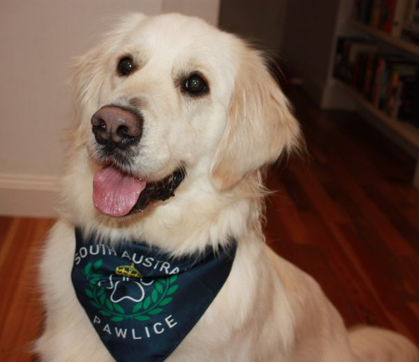South Australia PAWlice Dog Bandanna